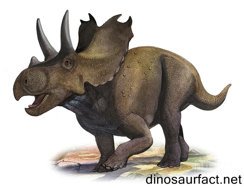 agujaceratops2
